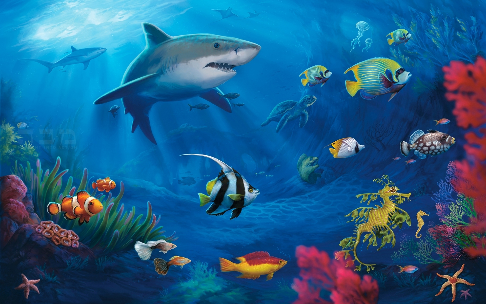 Shark whale wallpapers for Are sharks fish