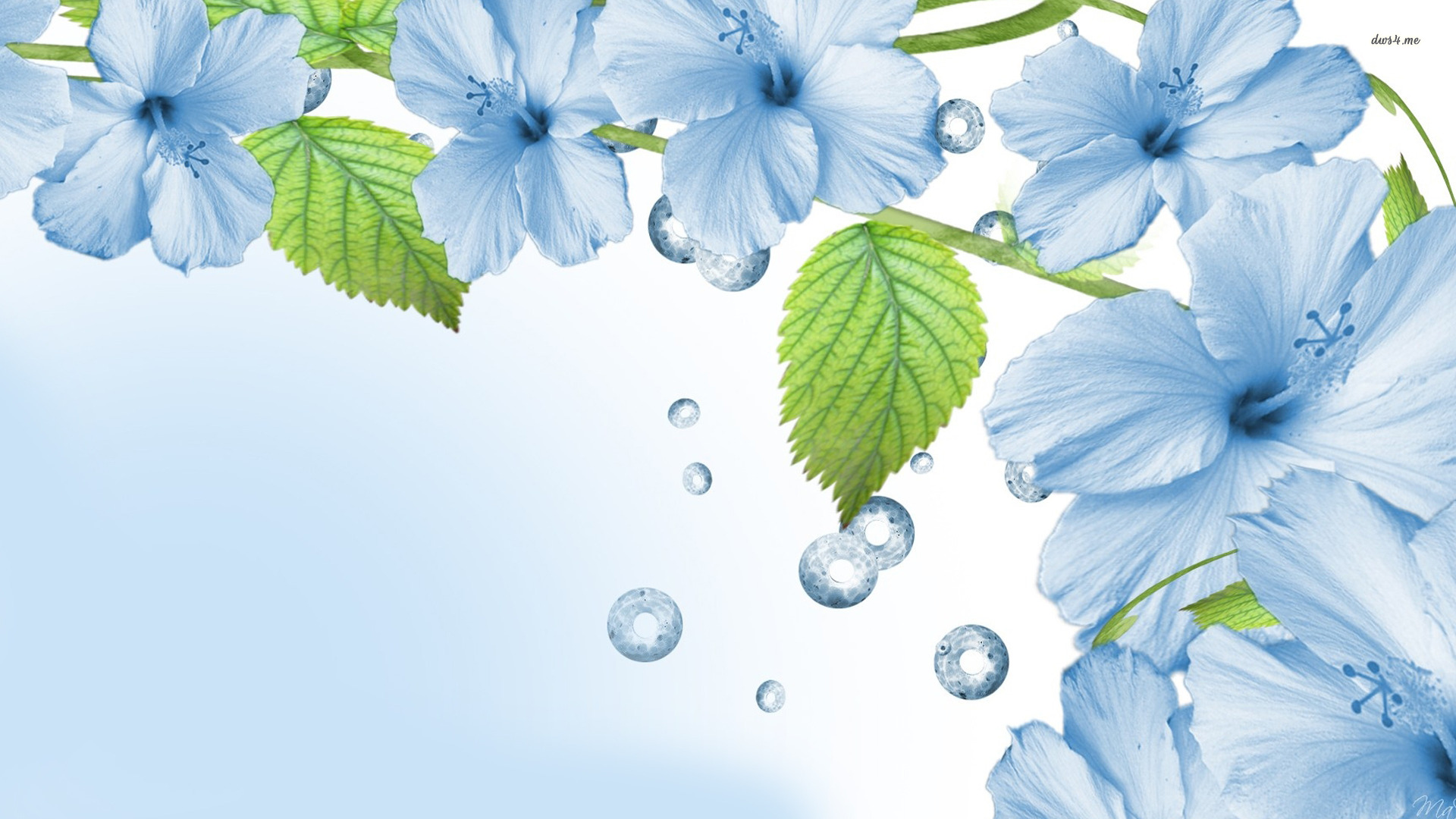 HD Blue Flower Wallpapers. Light Blue Flower Wallpaper